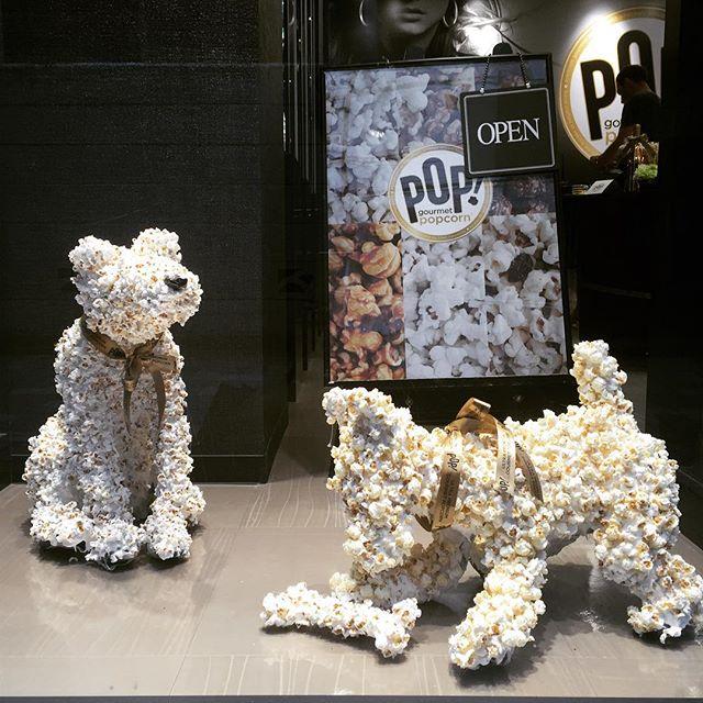6. Pop gourmet popcorn