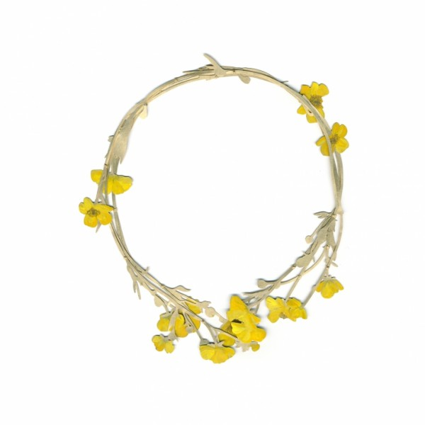 C-Thompson-Royds-Buttercup-