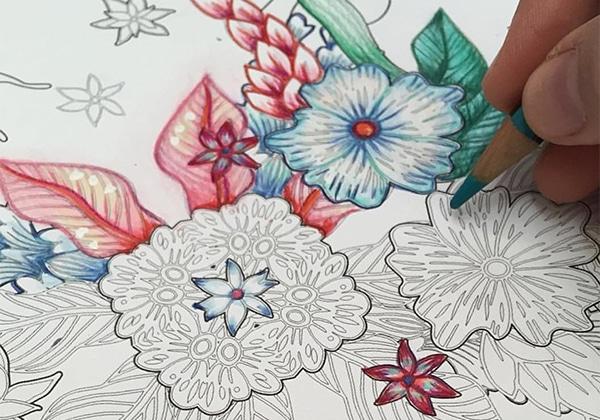 Jungla Cósmica: Los dibujos para adultos de Catalina Estrada – VEIN ...